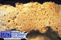 Indoor Air Quality Solutions spray polyurethane foam SPF insulation